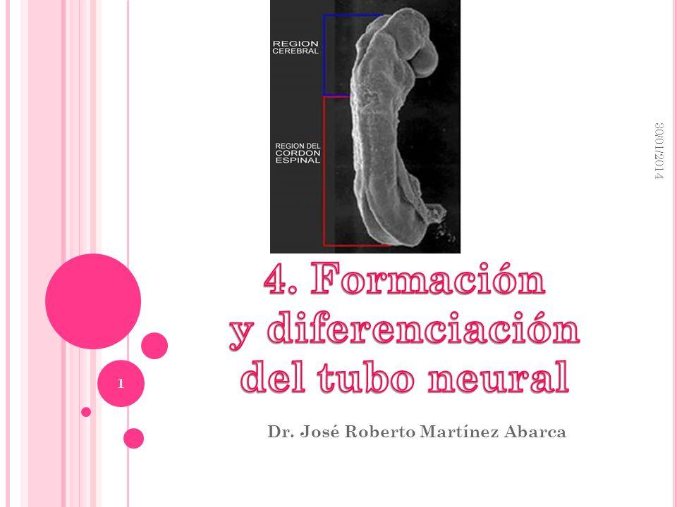 72bcf403571 Dr. José Roberto Martínez Abarca - ppt descargar