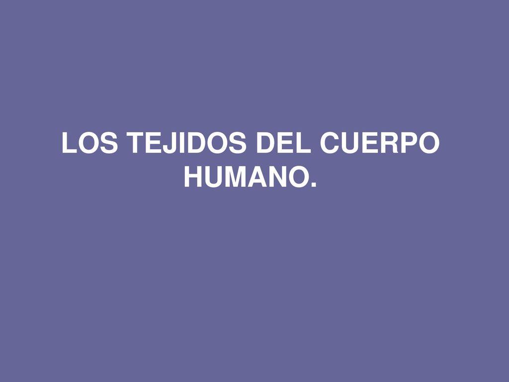 LOS TEJIDOS DEL CUERPO HUMANO. - ppt descargar