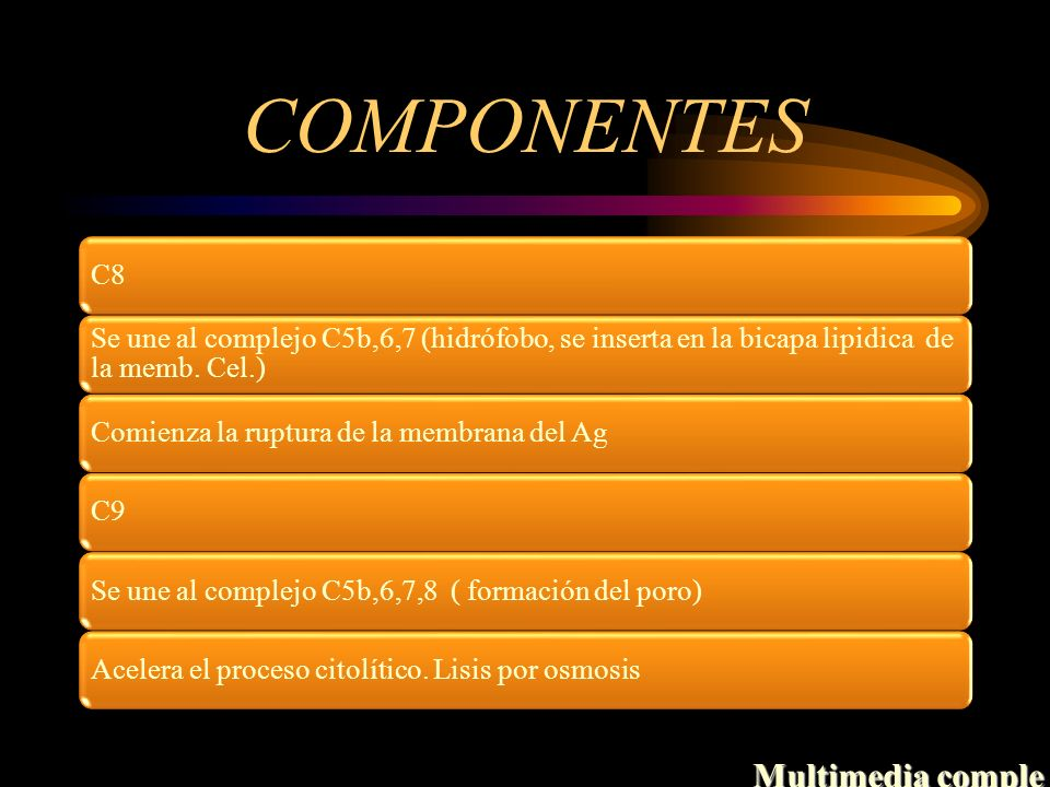 COMPONENTES Multimedia comple C8