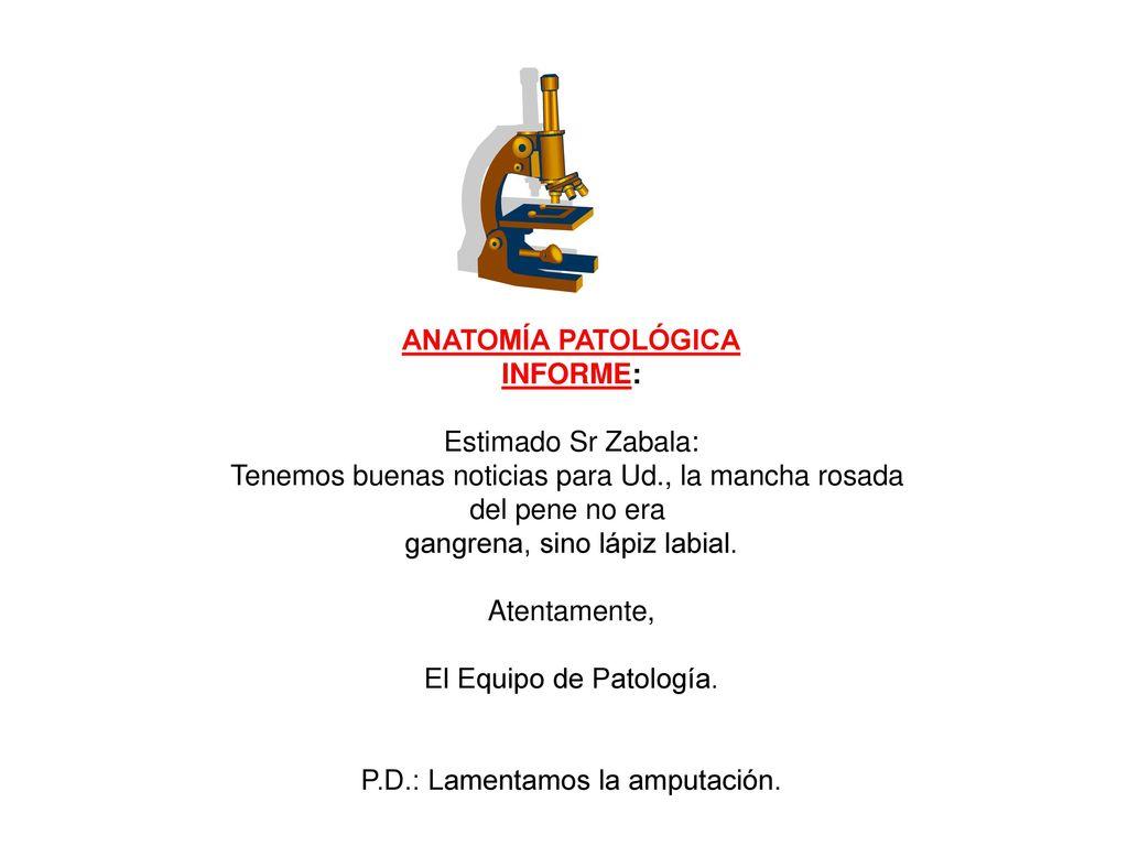 ANATOMÍA PATOLÓGICA INFORME: - ppt descargar