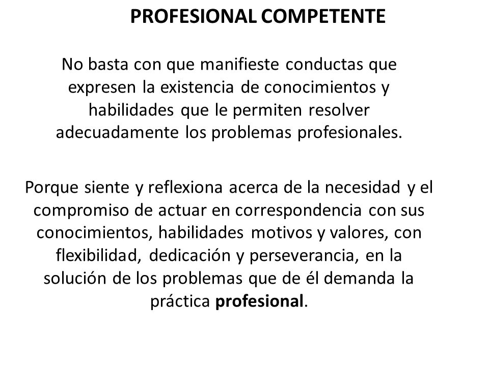 PROFESIONAL COMPETENTE