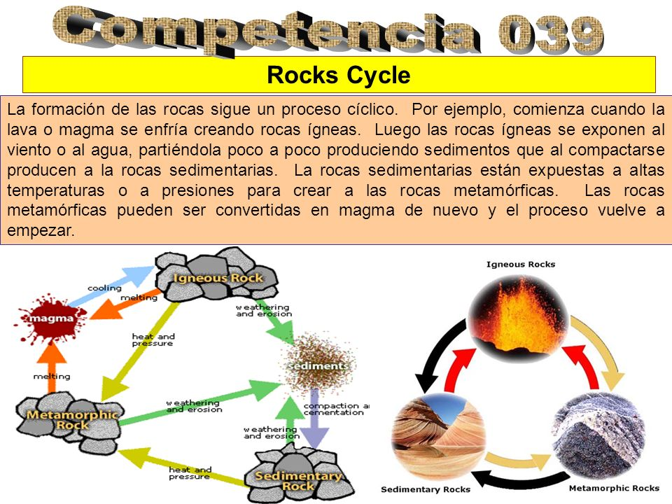 Competencia 039 Rocks Cycle