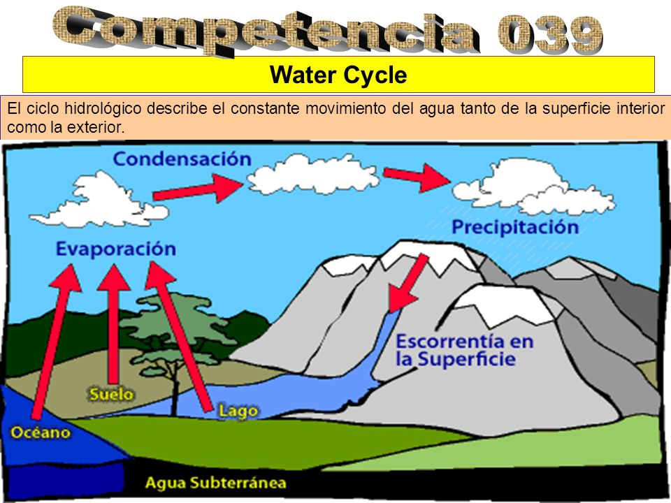 Competencia 039 Water Cycle