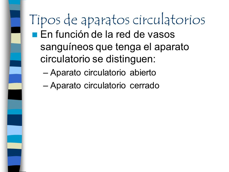 Tipos de aparatos circulatorios