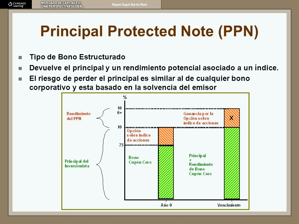 Principal Protected Note (PPN)