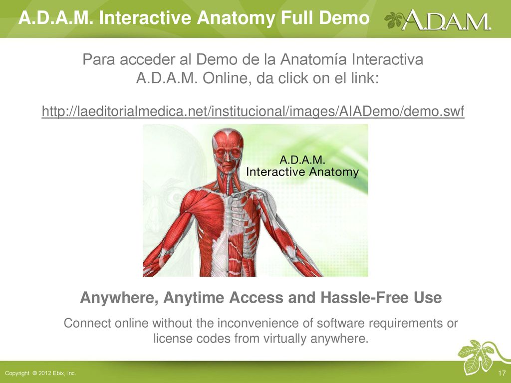 Anatomía interactiva AIA is an exciting online learning resource ...