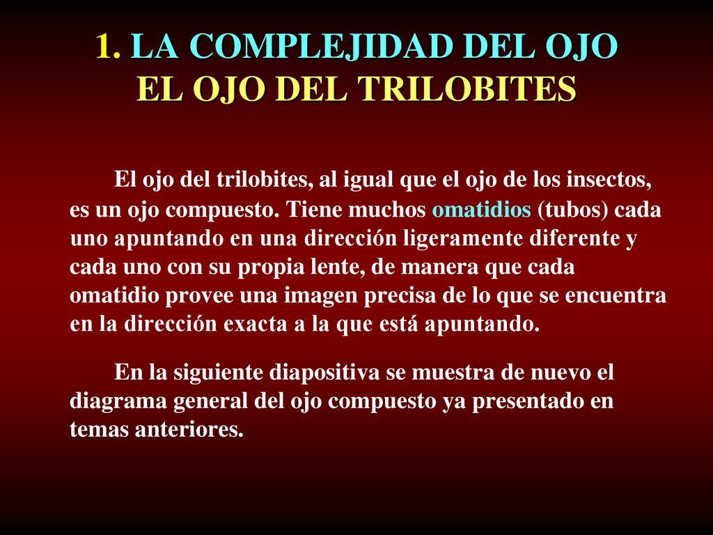 CHARLES DARWIN Y EL OJO PARTE 2. Ojos complejos TEMA 5 Ariel A. Roth ...