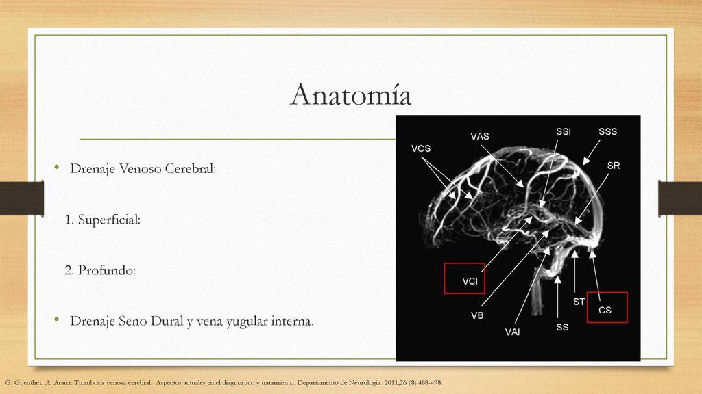 Trombosis Venosa Central - ppt descargar