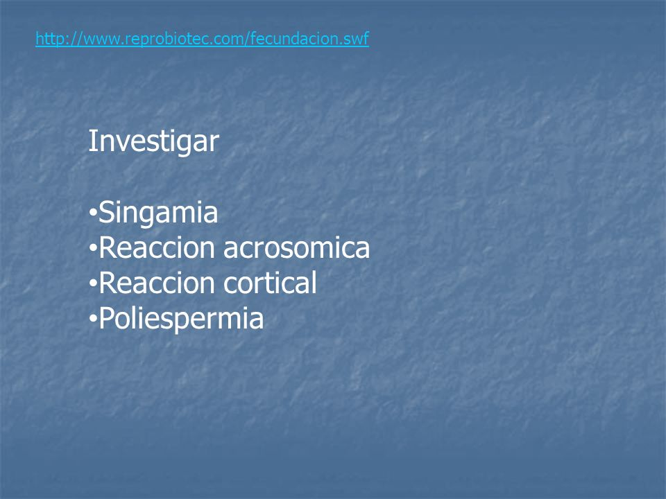 Investigar Singamia Reaccion acrosomica Reaccion cortical Poliespermia