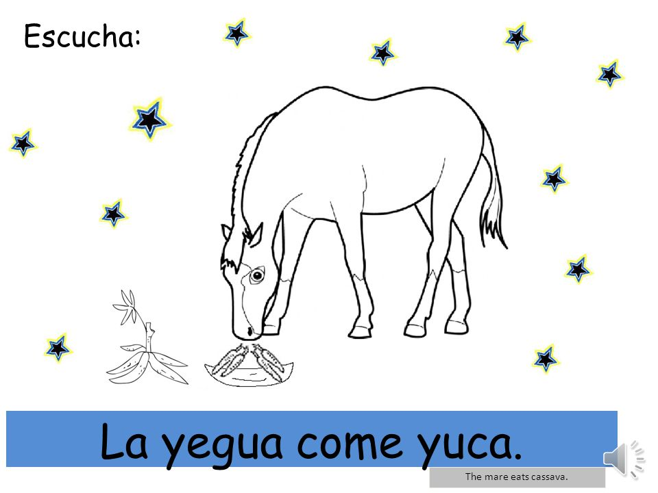 Escucha: mi La yegua come yuca. The mare eats cassava.
