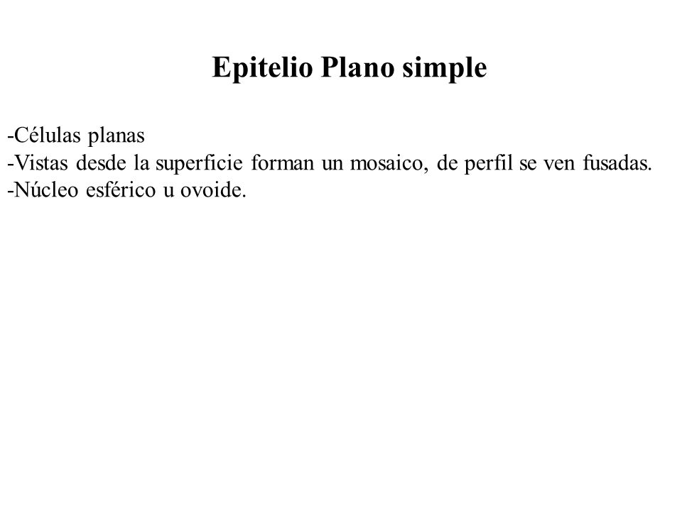 Epitelio Plano simple -Células planas