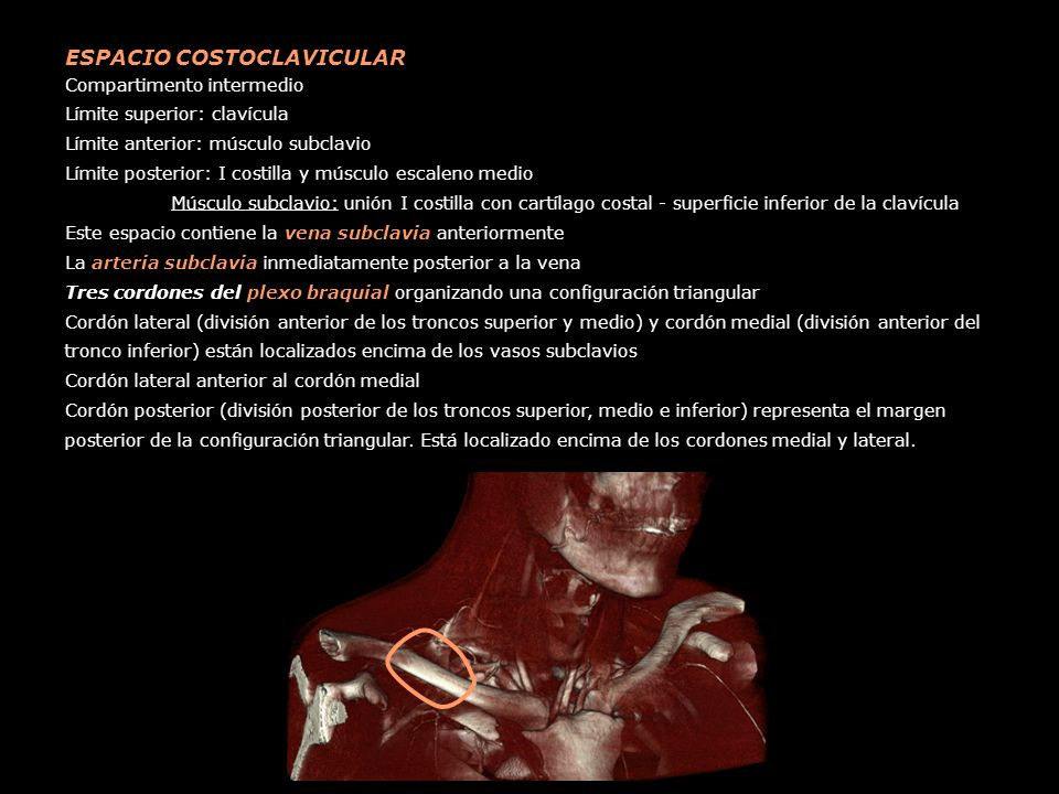 TRIÁNGULO INTERESCALENO - ppt video online descargar