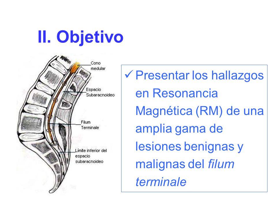 Patologia Del Filum Terminale Una Mirada Atras Ppt Descargar What kind of tissue is the film terminale? patologia del filum terminale una