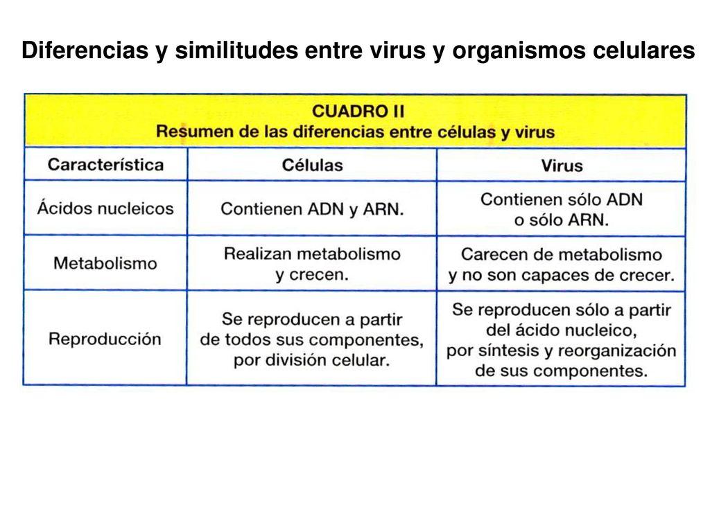 16 Microbiología I Ppt Descargar