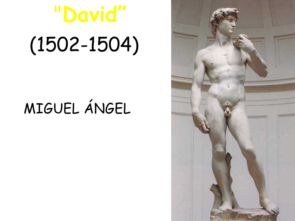 David ( ) MIGUEL ÁNGEL
