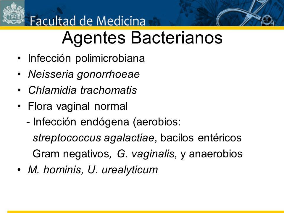 Agentes Bacterianos Infección polimicrobiana Neisseria gonorrhoeae