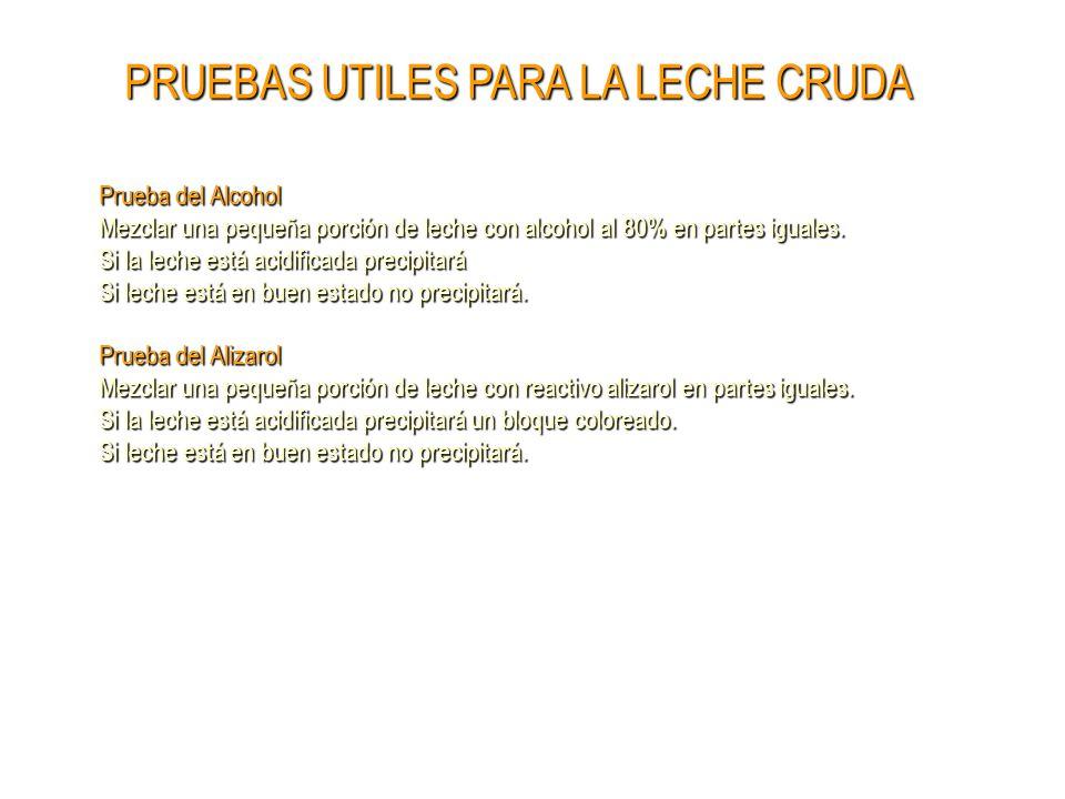 LECHE Y PRODUCTOS LACTEOS - ppt descargar