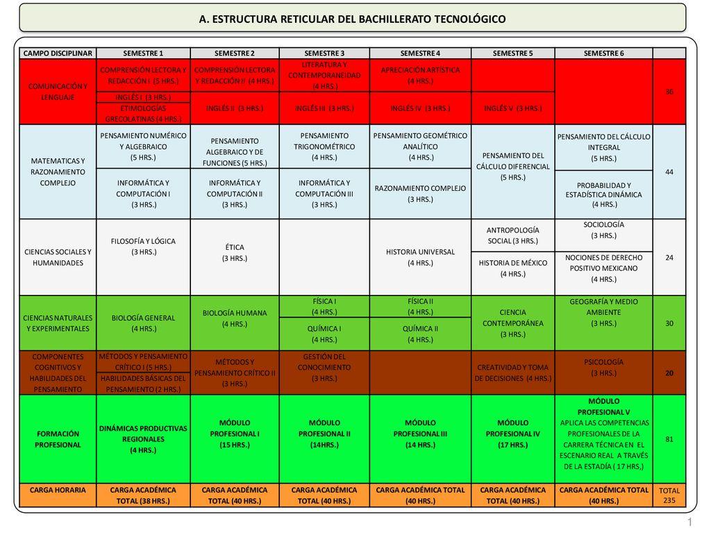 A Estructura Reticular Del Bachillerato Tecnológico Ppt