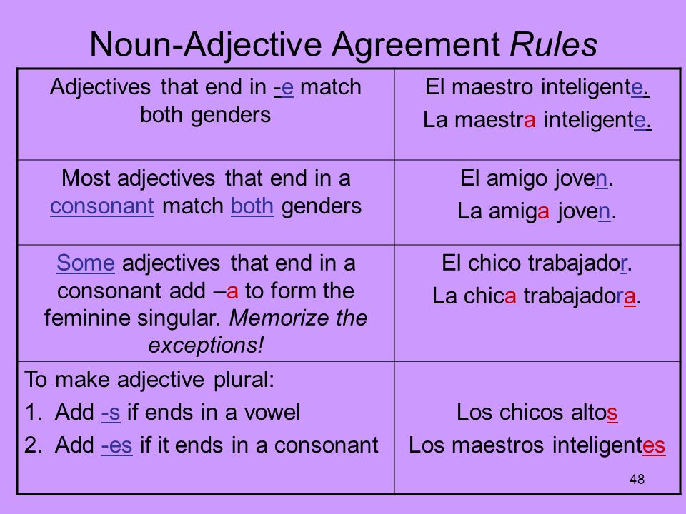 Noun-Adjective Agreement Rules