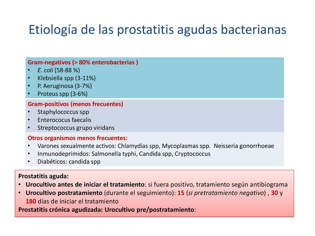 Enterococcus cystitis immunitás