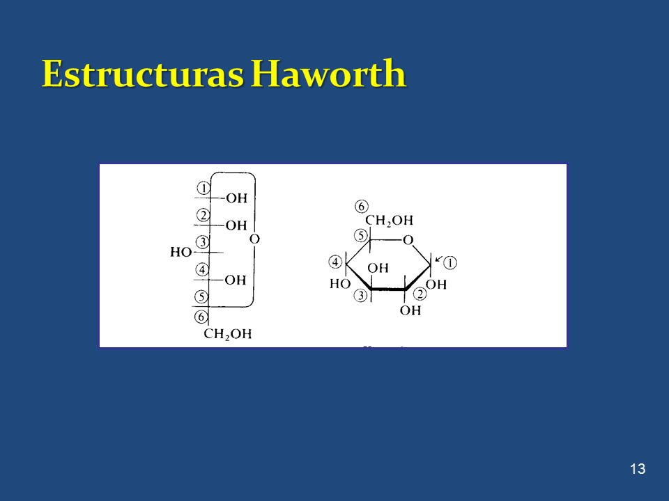 Estructuras Haworth