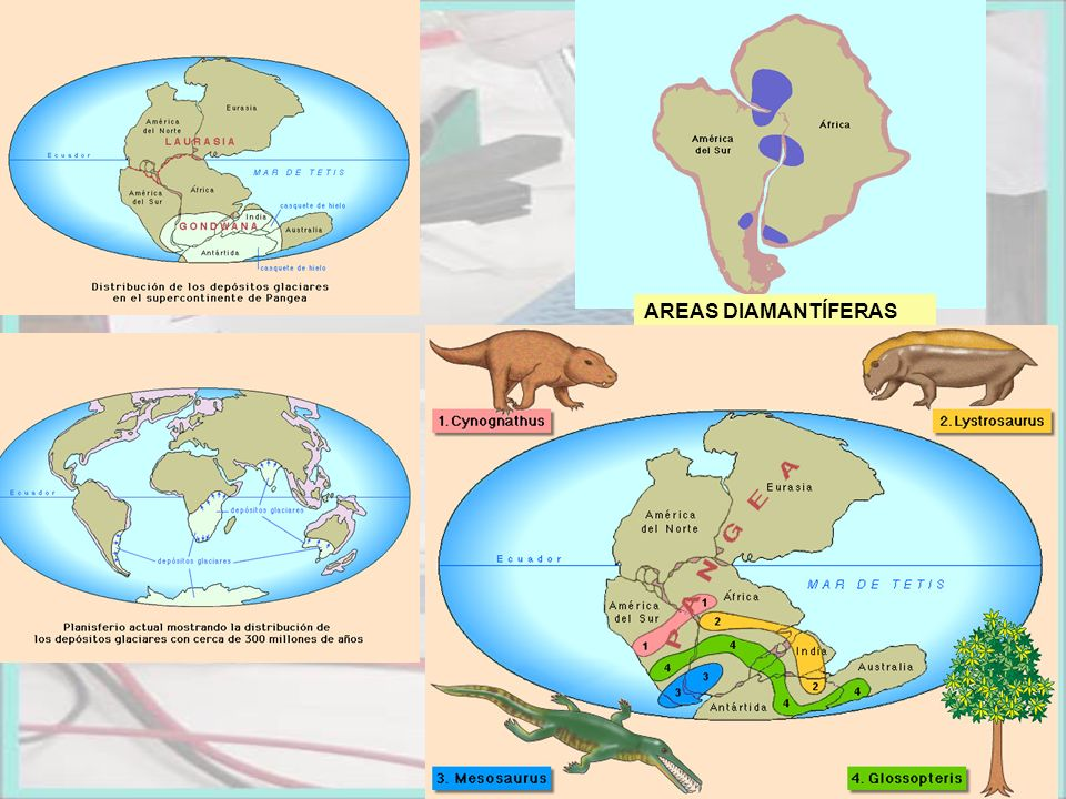 AREAS DIAMANTÍFERAS