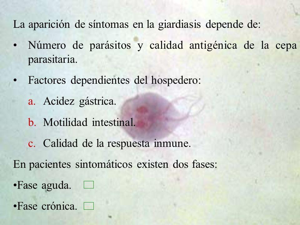 que es la giardiasis cronica