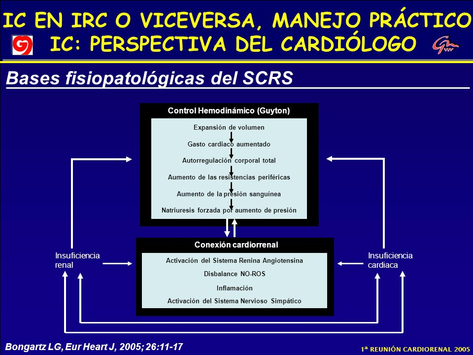 Bases fisiopatológicas del SCRS