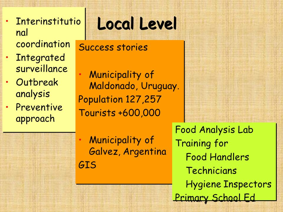 Local Level Interinstitutional coordination Integrated surveillance