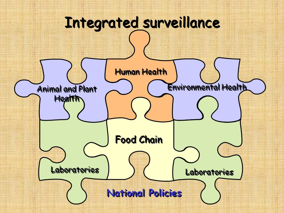 Integrated surveillance