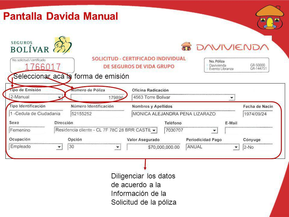 Pantalla Davida Manual