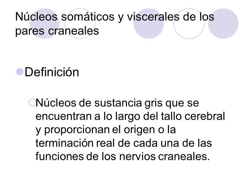 Núcleos Somáticos Y Viscerales De Los Pares Craneales - ppt video ...