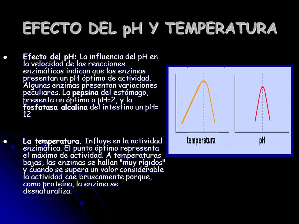 EFECTO DEL pH Y TEMPERATURA