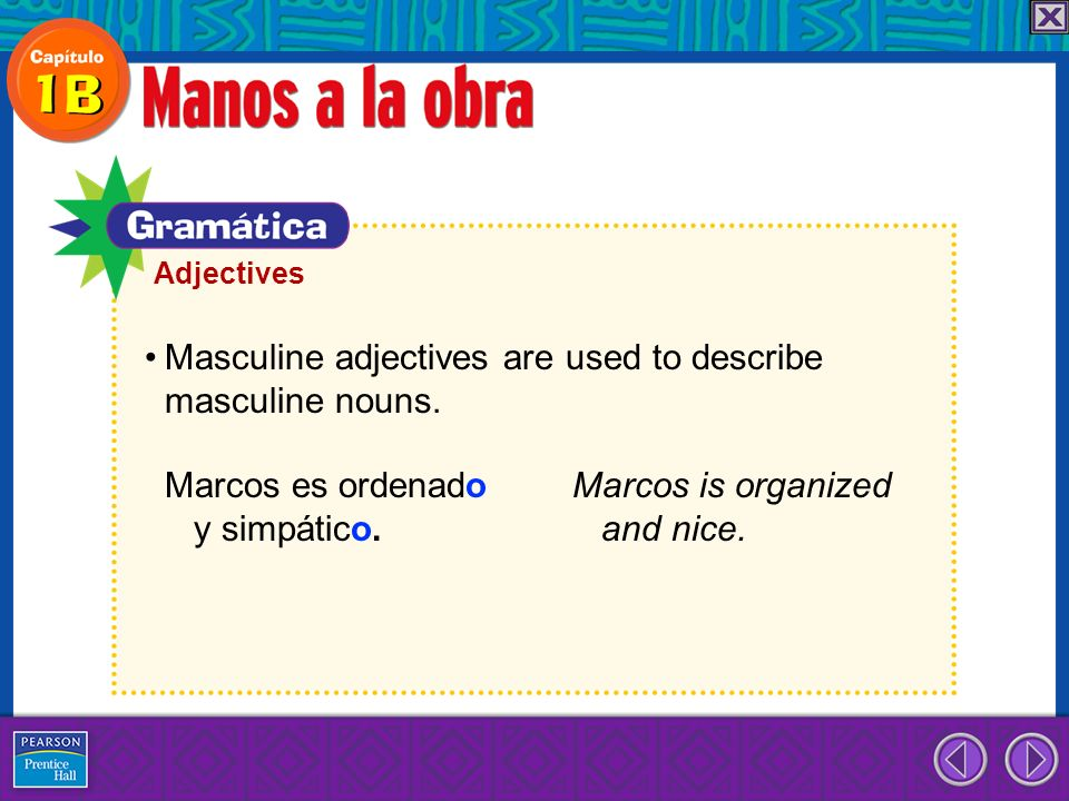 Adjectives Masculine adjectives are used to describe masculine nouns.