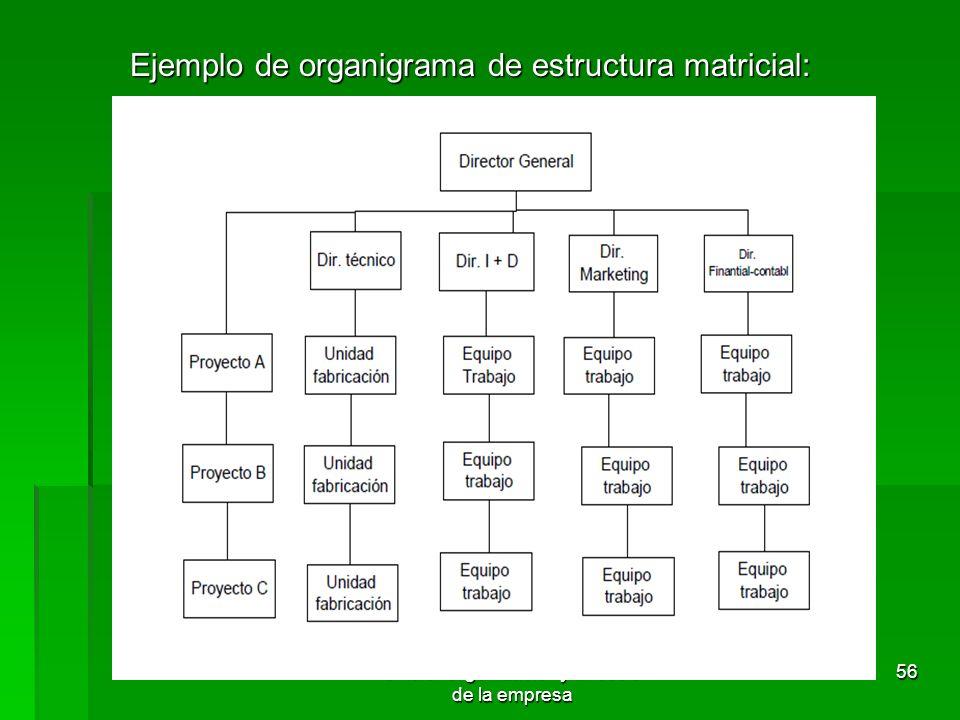 Tema 3 Organización Y Dirección De La Empresa Ppt Descargar