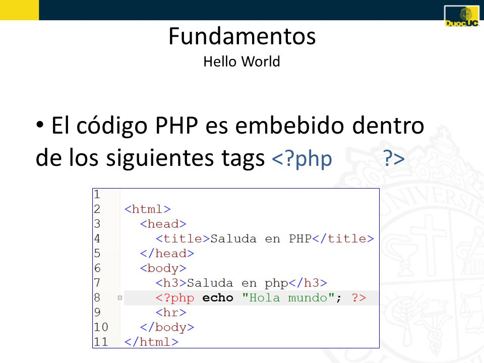Fundamentos Hello World