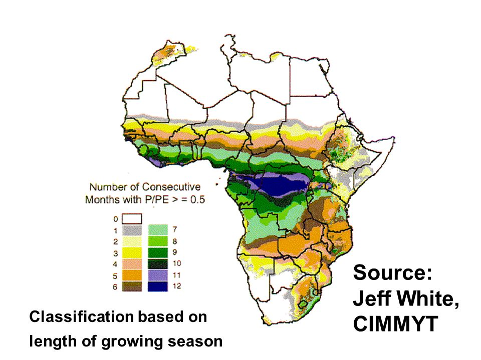 Source: Jeff White, CIMMYT