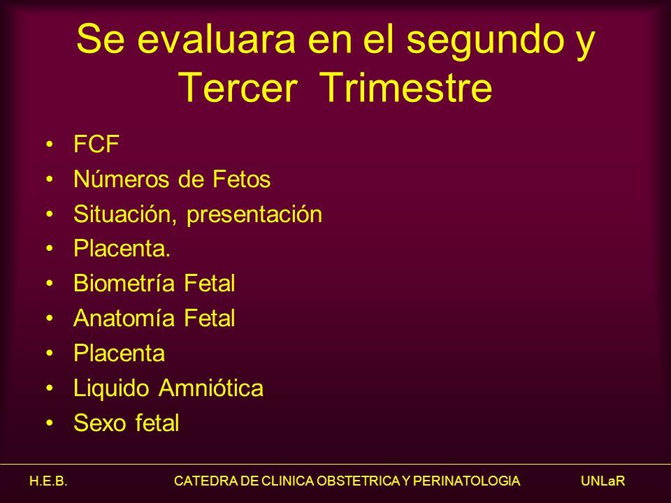 Cátedra de Clínica Obstétrica y Perinatología - ppt video online ...