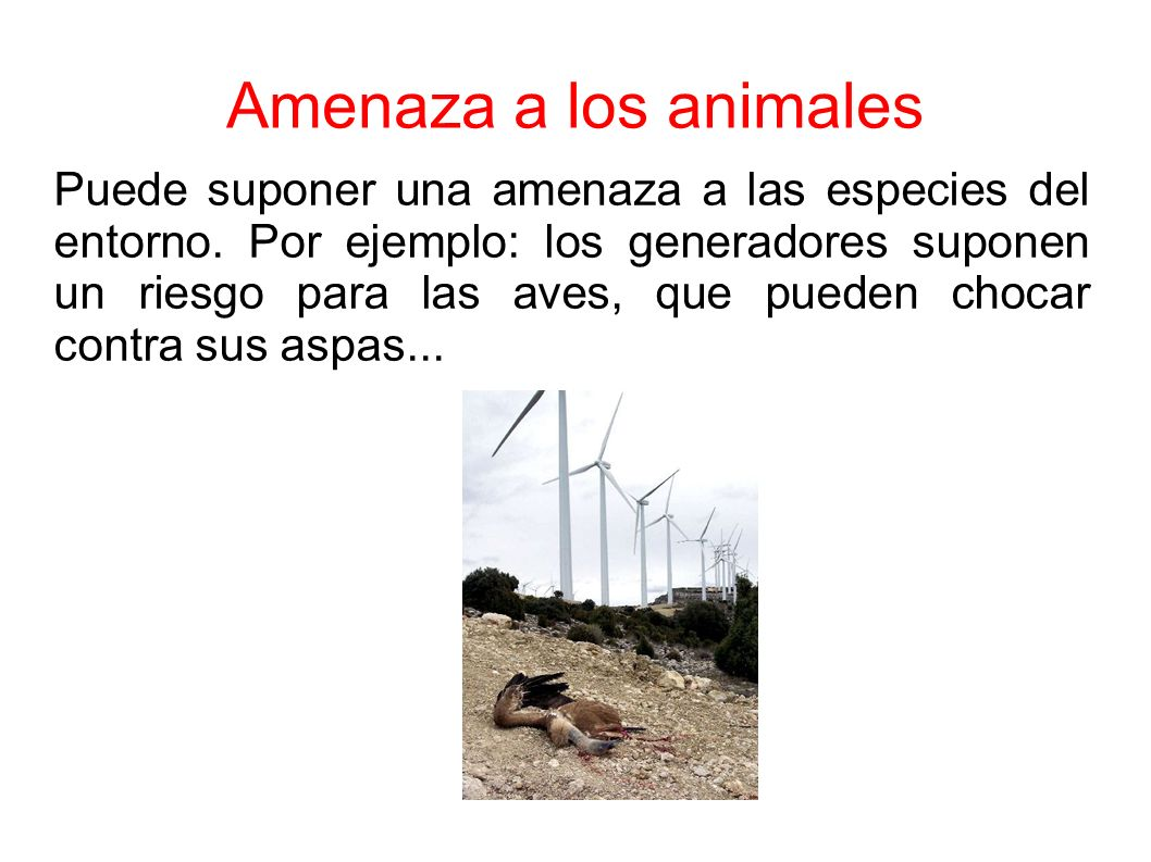 Amenaza a los animales