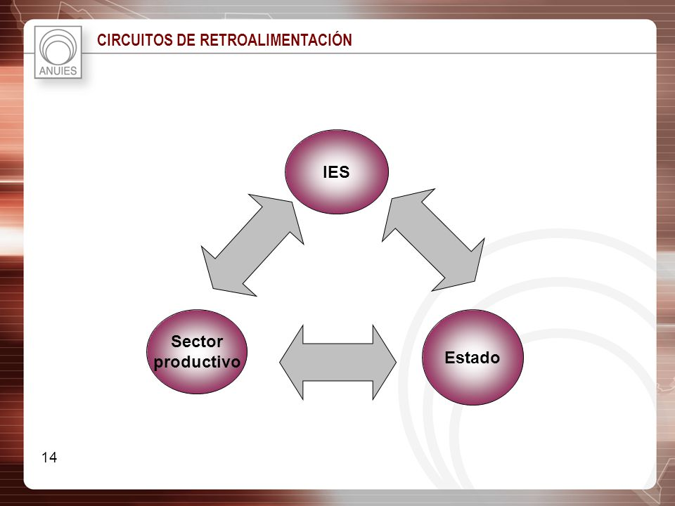 IES Sector productivo Estado