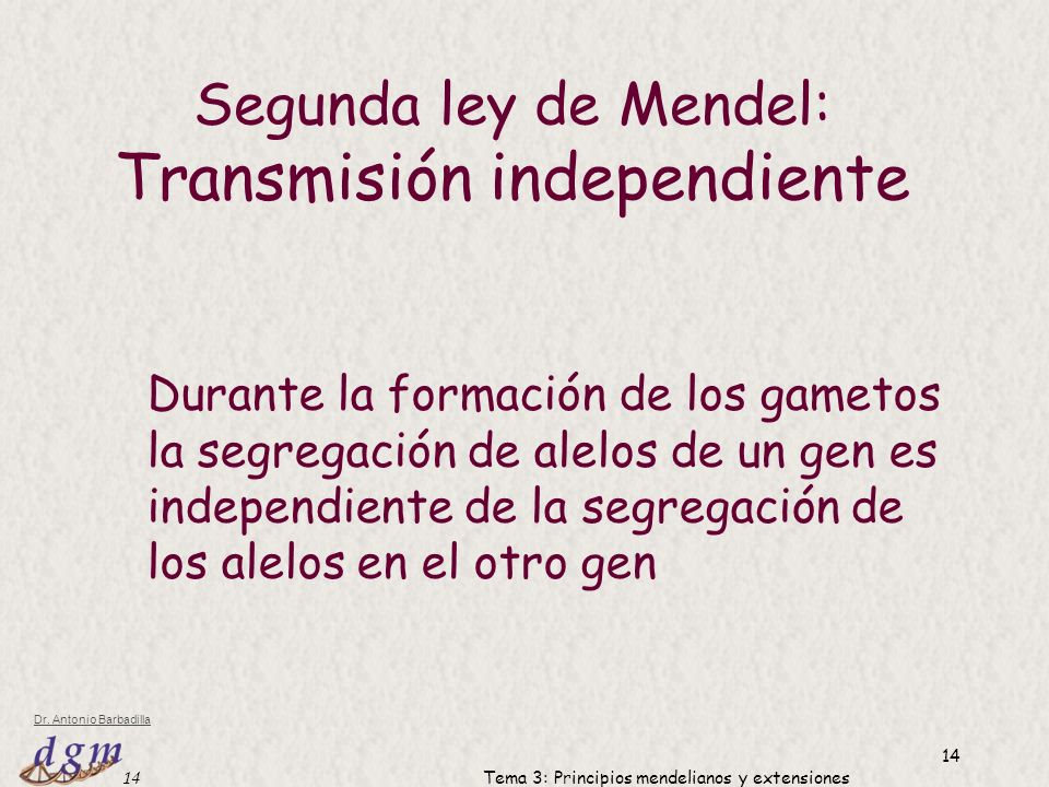 Transmisión independiente
