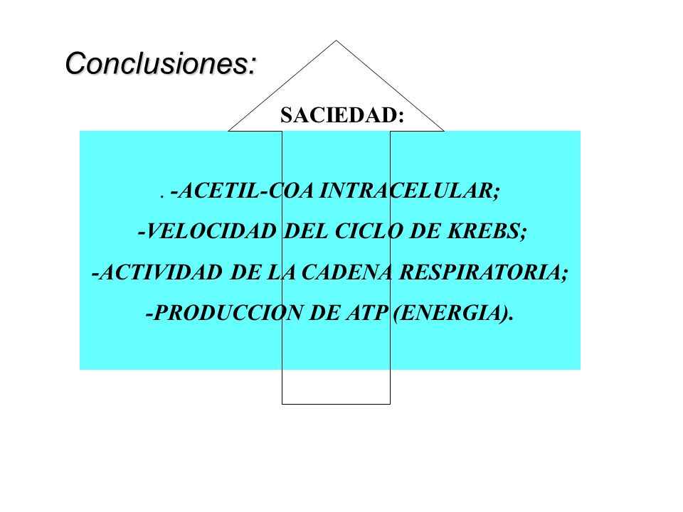 Conclusiones: SACIEDAD: . -ACETIL-COA INTRACELULAR;