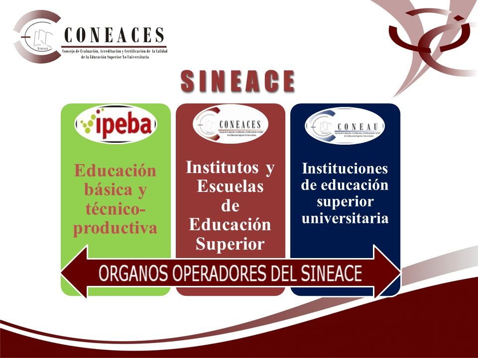 S I N E A C E Institutos y Escuelas de Educación Superior