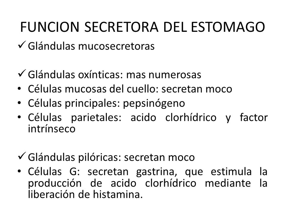 FUNCION SECRETORA DEL ESTOMAGO