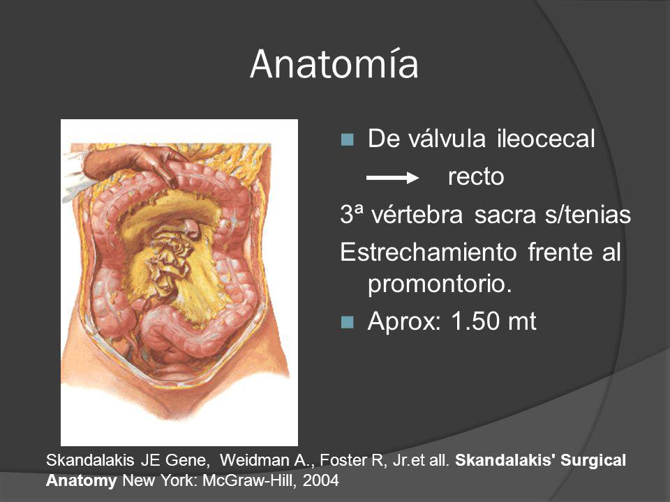 MONDRAGON R1CG Cáncer de Colon. - ppt video online descargar