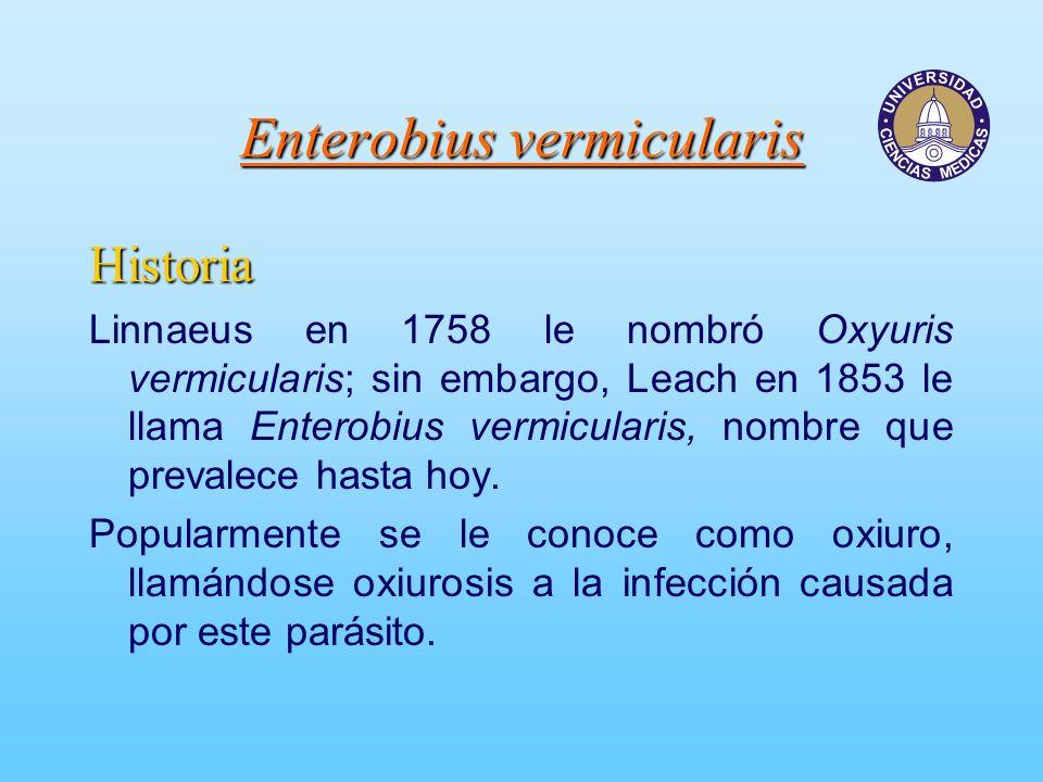 Enterobiasis threadworm