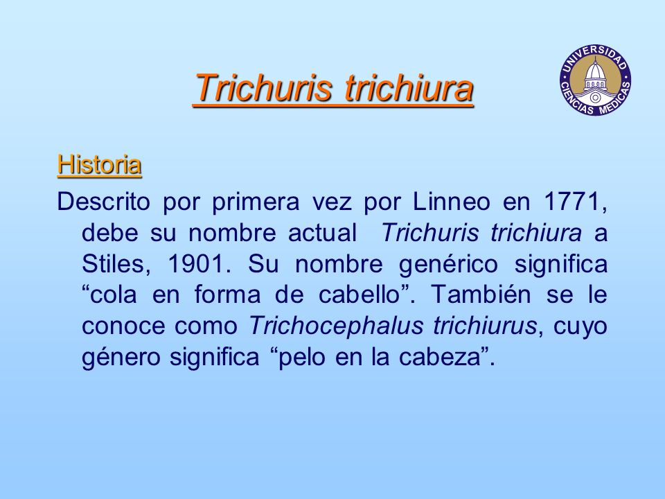 A trichocephalosis ápolása