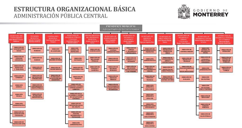 Estructura Organizacional Básica Ppt Descargar