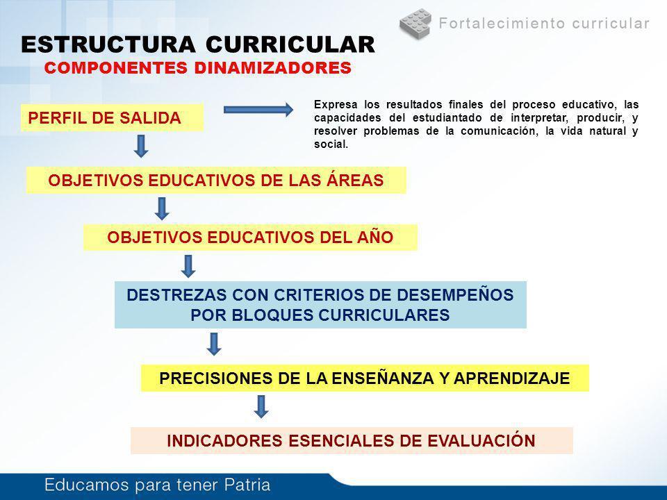 Estructura Curricular Sistema De Conceptos Empleados Ppt