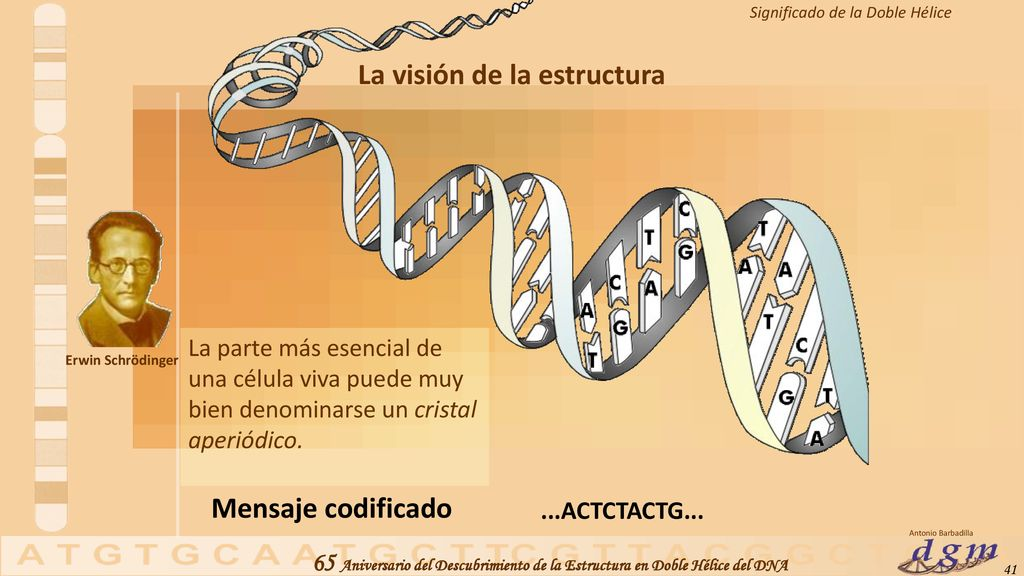 Celebrate DNA Day explore our best genetics research - ppt descargar